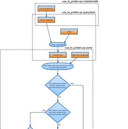 uce-to-protein-flowchart (5)